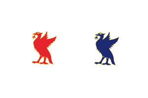Liverbird Pin