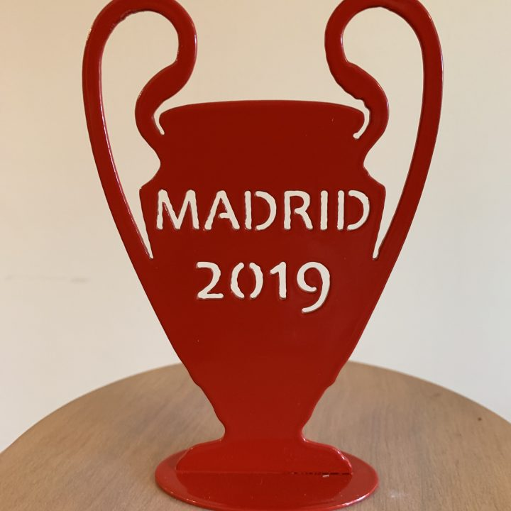 Madrid 19 Red Cup3